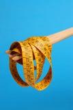 Forquilha de madeira com medida Imagem de Stock