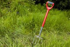 Forquilha do jardim em um jardim Overgrown Fotos de Stock Royalty Free