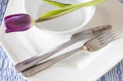 Forquilha e faca da placa Imagens de Stock