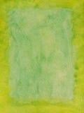 forrest известка зеленого цвета рамки Стоковые Изображения RF