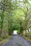 Forrest дорога в Лидсе, Великобритании Стоковая Фотография