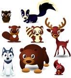 Forrest animals illustration set Royalty Free Stock Photos