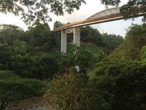Forrest Bridge Royaltyfri Foto