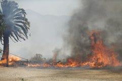 Forrest Fire- - Camarillo-Frühlinge 5-2-2013 Stockfotografie