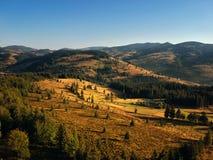 Forrest krajobraz przy zmierzchem chwytającym z trutniem obraz royalty free
