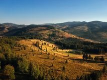 Forrest landscape at sunset captured with a drone Royalty Free Stock Image