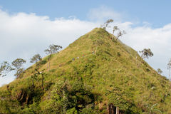 Forrest mountain in thailand stock images