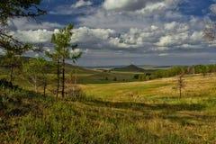 Forrest och kullar Royaltyfria Foton