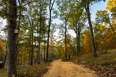 Forest path in the Ozarks mountains of Missouri. Country road on a Fall day with the colored leaves outdoors in the Ozark Mountains of Missouri royalty free stock image
