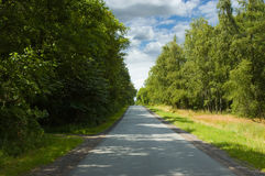 Forrest road Stock Photo
