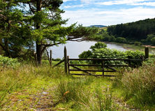 Forrest track with a gate overlooking a lake. Forrest track with a wodden gate overlooking beautiful lake with blue cloudy sky Stock Images