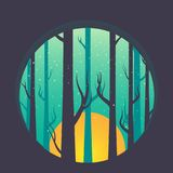 Forrest and trees with moon rainy day Vector Illustration