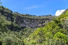 Forrest und Gebirgsklippenpanorama Stockbild
