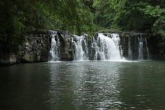 Forrest & vattenfall arkivbild