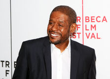 Forrest Whitaker Royalty Free Stock Photo