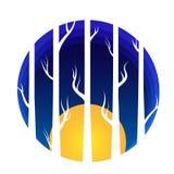 Forrest y árboles con la luna en el parer blanco imagen de archivo libre de regalías