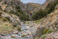 Fors i ström för infödingBush berg Arkivbilder