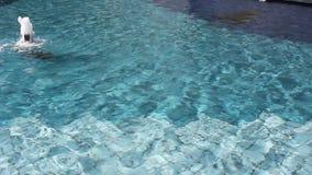 Forsa för vatten arkivfilmer