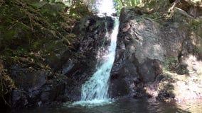 The Forsakar Waterfall, Sweden. The Forsakar Waterfall located in Scania, Sweden stock footage