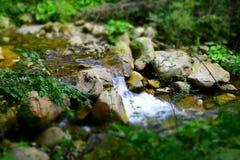Forsar av en bergflod Arkivbilder
