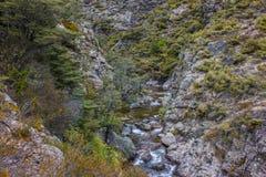 Forsar i ström för infödingBush berg Royaltyfri Bild