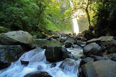 Forsar på den LaFortuna vattenfallet Arkivbild