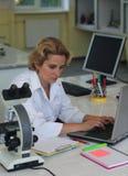 Forscher Stockfotos