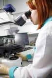 Forscher Lizenzfreies Stockbild