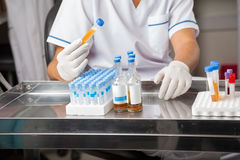 Forscher-Analyzing Sample In-Reagenzglas stockfotografie