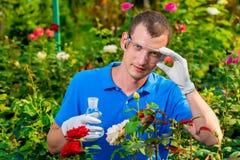 Forscher, den ein Biologe mit einem Reagenzglas in einem Gewächshaus nimmt Stockfotos