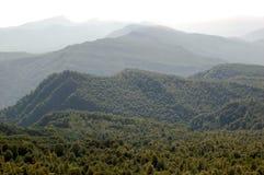 Forset y montañas foto de archivo libre de regalías