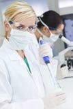 forskare för pipette för kvinnliglaboratoriummikroskop Royaltyfri Fotografi