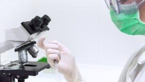 Forskare Filling Test Tube med pipetten i laboratorium Nära övre sikt av en fyllande provrör för kvinnlig forskare med stock video