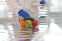 Forskare med frukter och grönsaker Arkivfoto