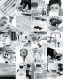 Forskare och deras toys, collage royaltyfri fotografi