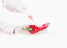 Forskare som applicerar injektionen till peppar Royaltyfri Fotografi