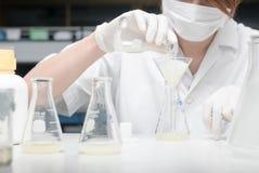 Forskare som arbetar i laboratoriumet som testar prövkopior Royaltyfria Foton