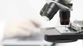 Forskare som arbetar på bärbara datorn bak mikroskopet arkivfilmer
