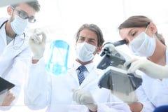 Forskare som f?r forskning i en labbmilj? royaltyfri bild