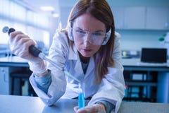 Forskare som spolar ren kemikalien in i provröret Arkivfoto