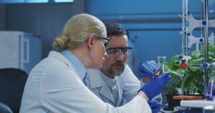 Forskare som unders?ker flytande stock video