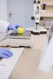 Forskare som väger äpplet Arkivbilder