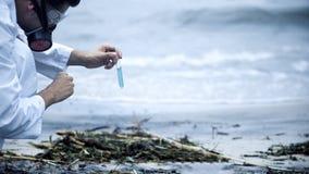 Forskaren som tar prövkopian av vatten på kusten, vård- frågor, orsakade vid förorening royaltyfri bild