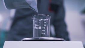 Forskaren väger materialet i labbet stock video