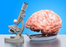 Forskning och diagnostik av begreppet för hjärnsjukdom Laboratoriummikroskop med den m?nskliga hj?rnan, tolkning 3D royaltyfri illustrationer