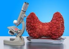 Forskning och diagnostik av begreppet för sköldkörtelsjukdom Laboratoriummikroskop med den mänskliga sköldkörteln, tolkning 3D royaltyfri illustrationer