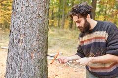 Forstwirt mesure l'humidité en bois sur l'arbre photos libres de droits