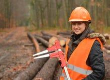Forstwirtschaftsarbeitskraft Stockbild