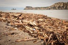 Forstwirtschaftshieb wusch sich oben auf Strand an Tolaga-Bucht, Neuseeland nach einer Flut Stockfoto