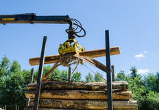 Forstwirtschaftsschneider-Ladenschnitt meldet Stapelanhänger an Stockfoto